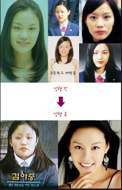 thesis on cosmetic surgery