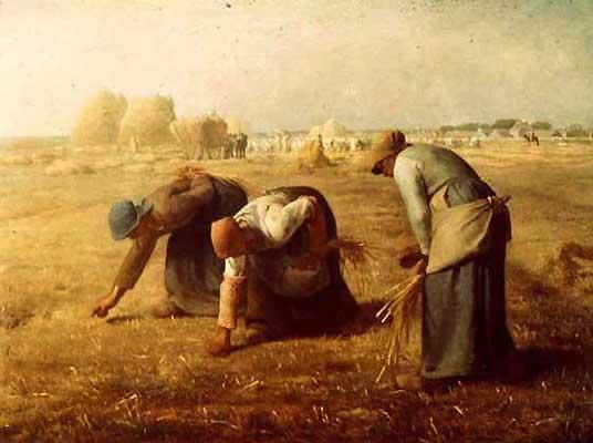 Harvest [Les glaneuses - Millet]